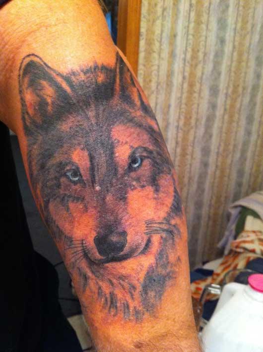 """Голова волка. Татуировка была распространена в сибирских ИТУ в 40-50 гг. среди """"отрицательно"""" настроенной части """"авторитетных"""" зеков."""