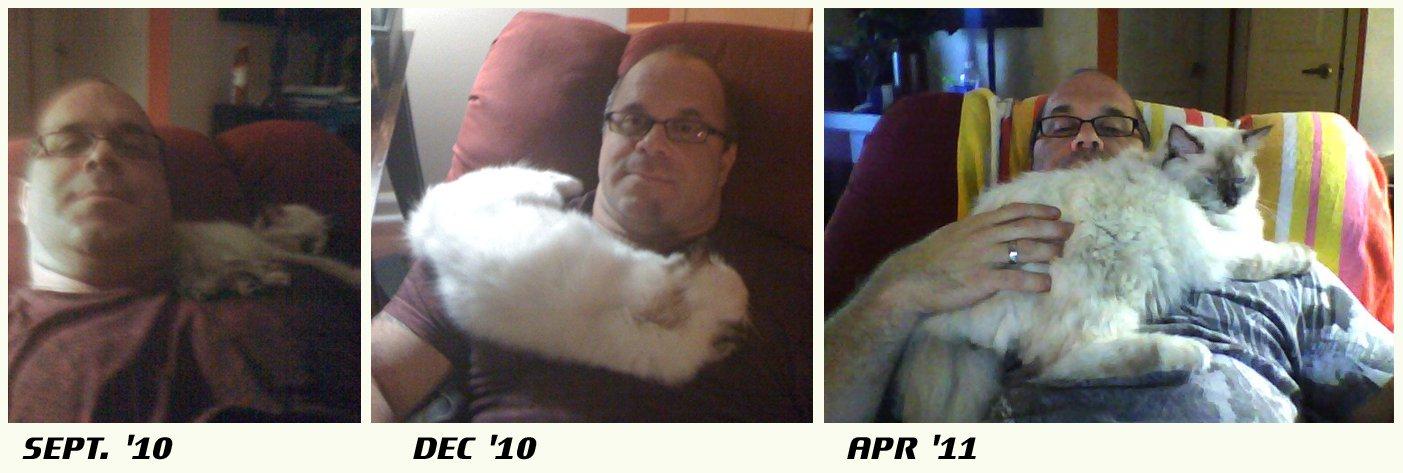 На фото Joe Norman и его кот Харлей в разные этапы своей жизни