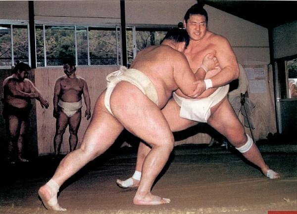 на фото сумоисты Kotomitsuki и Kotonowaka